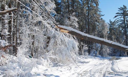 Puu on kaatunut sähkölinjan päälle ja auheuttanu sähkökatkon.