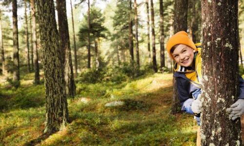 Pipopäinen poika kurkistaa hymyillen puun takaa metsässä.
