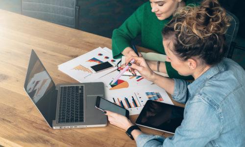 Kaksi naista istuu pöydän ääressä katselemassa tietokonetta ja pöydällä olevia papereita,